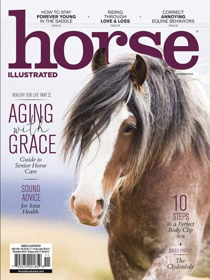 Horse Illustrated Cover - 11/1/2018