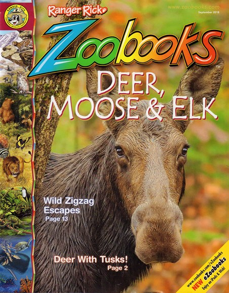 Zoobooks Cover - 9/1/2018