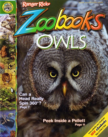 Zoobooks Cover - 10/1/2018
