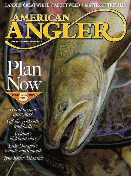 American Angler Cover - 11/1/2018