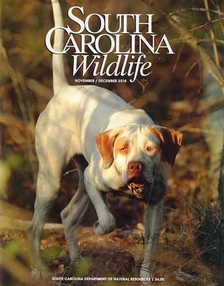 South Carolina Wildlife Cover - 11/1/2018