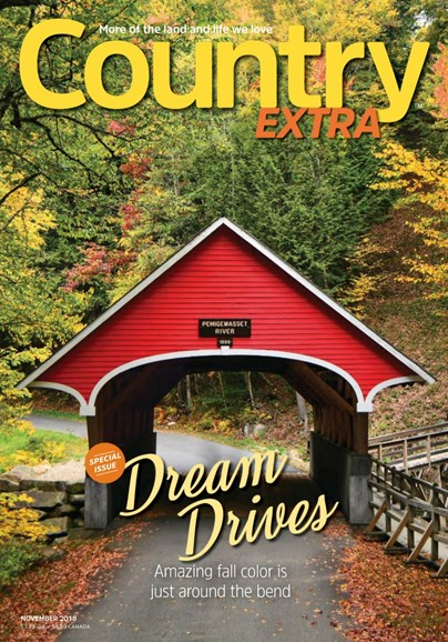 Country Extra Cover - 11/1/2018