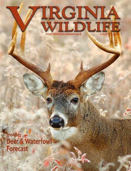 Virginia Wildlife Cover - 11/1/2018