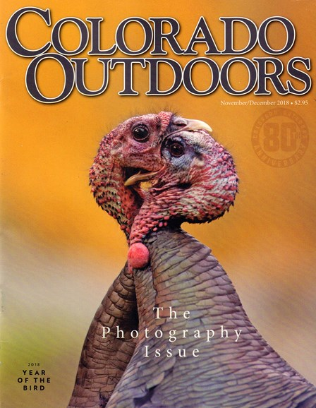 Colorado Outdoors Cover - 11/1/2018