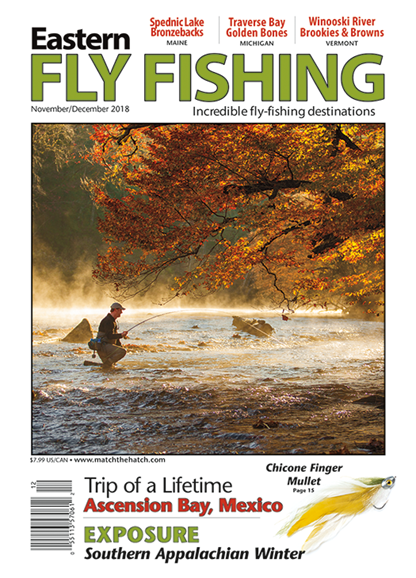 Eastern Fly Fishing Cover - 11/1/2018