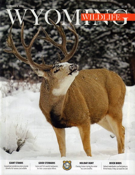 Wyoming Wildlife Cover - 12/1/2018