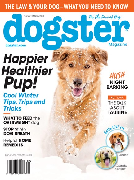 Dogster Cover - 2/1/2019