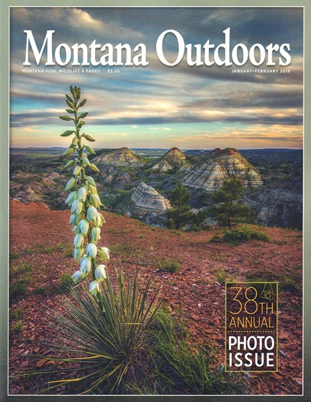 Montana Outdoors Cover - 1/1/2019
