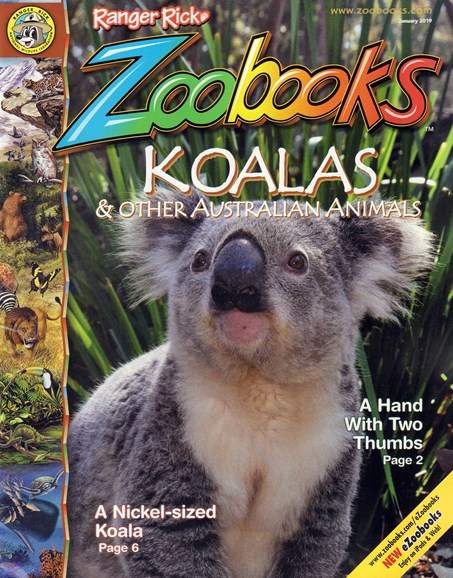 Zoobooks Cover - 1/1/2019
