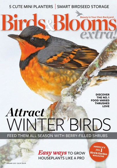 Birds & Blooms Extra Cover - 1/1/2019