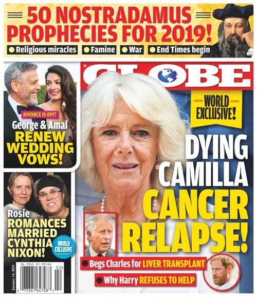 Globe Cover - 1/14/2019