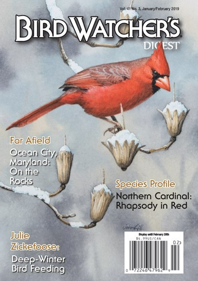 Bird Watcher's Digest Cover - 1/1/2019