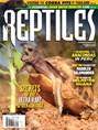 Reptiles | 11/2018 Cover