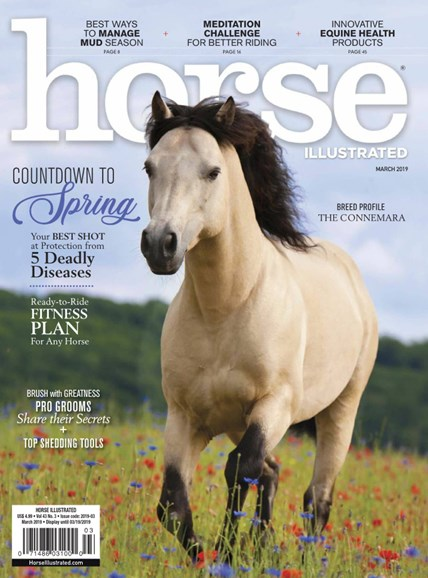 Horse Illustrated Cover - 3/1/2019