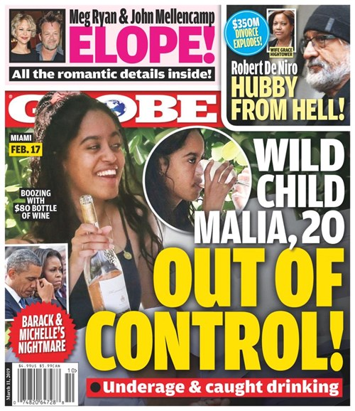 Globe Cover - 3/11/2019