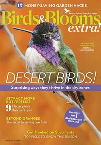 1-Year (7 Issues) of Birds & Blooms Extra Magazine Subscription