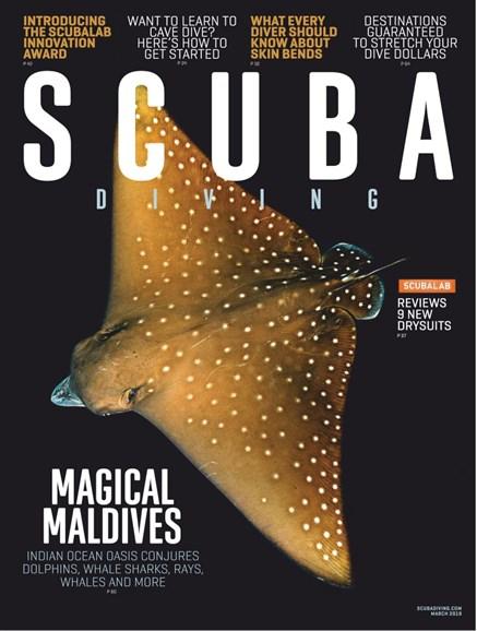 Scuba Diving Cover - 3/1/2019