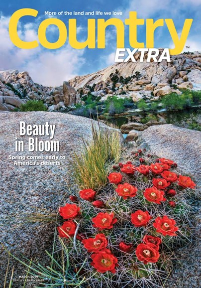 Country Extra Cover - 3/1/2019