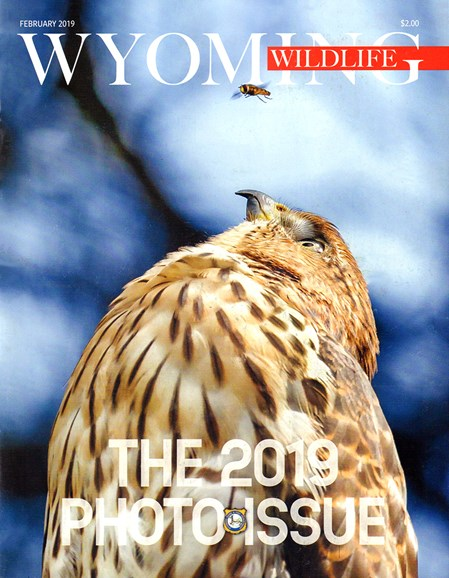 Wyoming Wildlife Cover - 2/1/2019