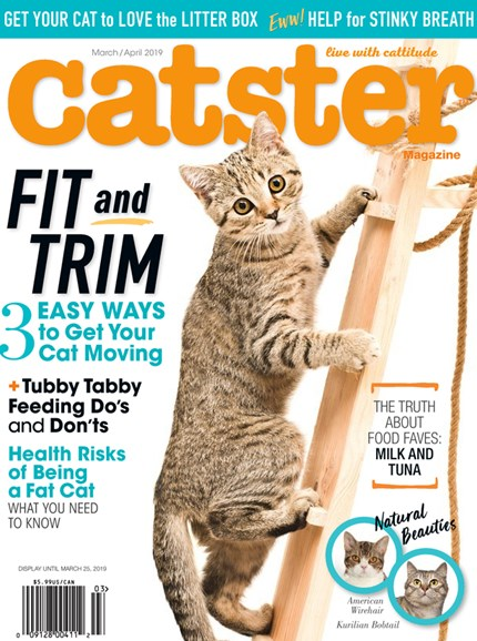 Catster Cover - 3/1/2019