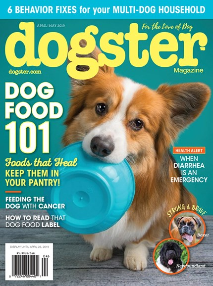 Dogster Cover - 4/1/2019