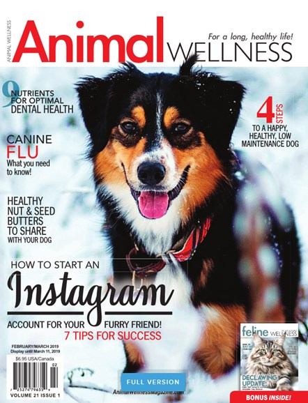 Animal Wellness Cover - 2/1/2019