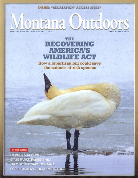 Montana Outdoors Cover - 3/1/2019