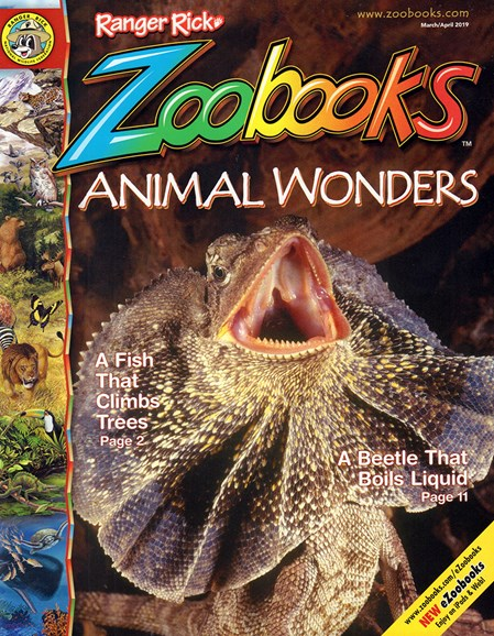 Zoobooks Cover - 3/1/2019