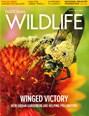 National Wildlife Magazine | 4/2019 Cover