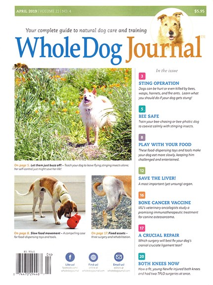 Whole Dog Journal Cover - 4/1/2019
