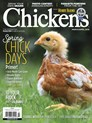 Chickens | 3/2019 Cover