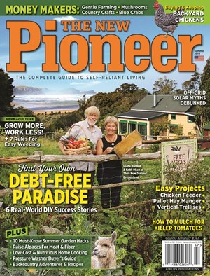 New Pioneer | 6/2019 Cover