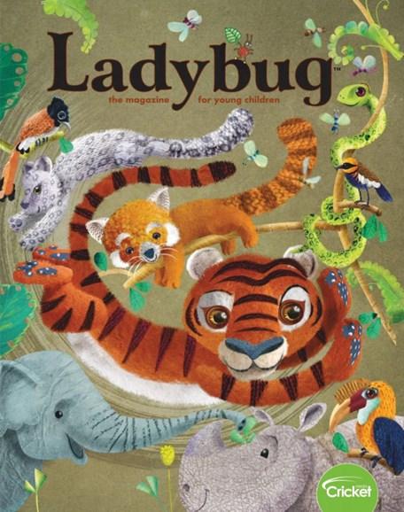 Ladybug Cover - 3/1/2019