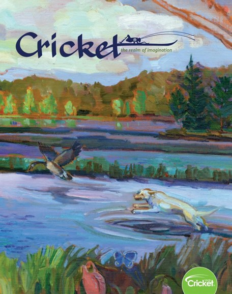 Cricket Cover - 3/1/2019