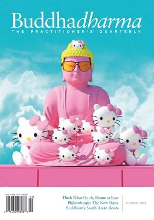 BUDDHADHARMA Magazine | 6/2019 Cover