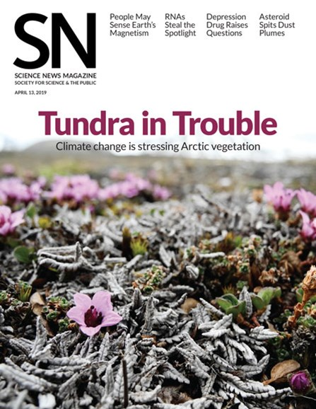 Science News Cover - 4/13/2019