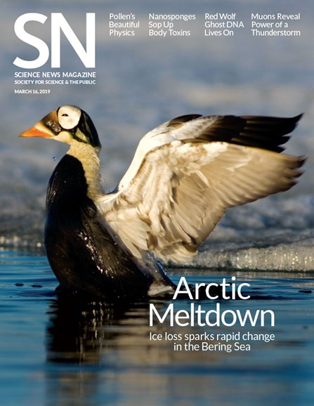Science News Cover - 3/16/2019