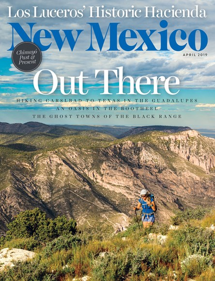 New Mexico Cover - 4/1/2019
