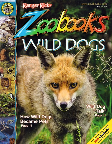 Zoobooks Cover - 5/1/2019