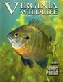 Virginia Wildlife Magazine | 5/2019 Cover