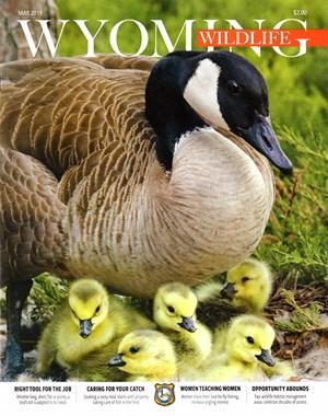 Wyoming Wildlife Magazine | 5/2019 Cover