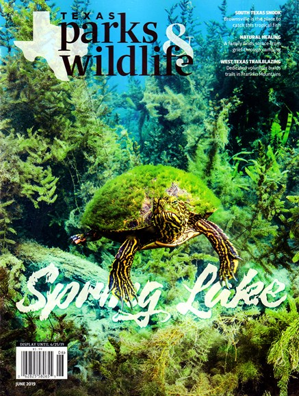 Texas Parks & Wildlife Cover - 6/1/2019