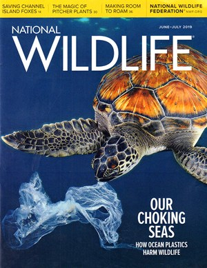 National Wildlife Magazine | 6/2019 Cover
