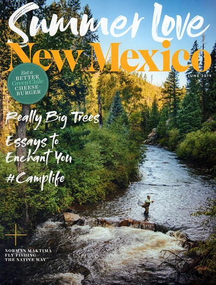 New Mexico Cover - 6/1/2019
