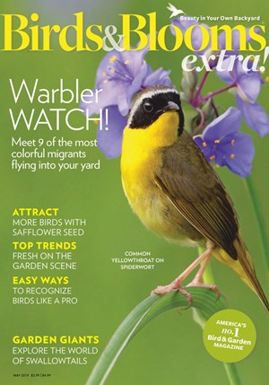 Birds And Blooms Extra   5/2019 Cover