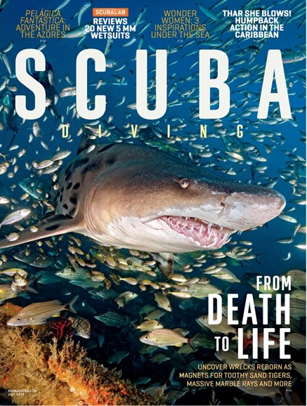 Scuba Diving Cover - 7/1/2019