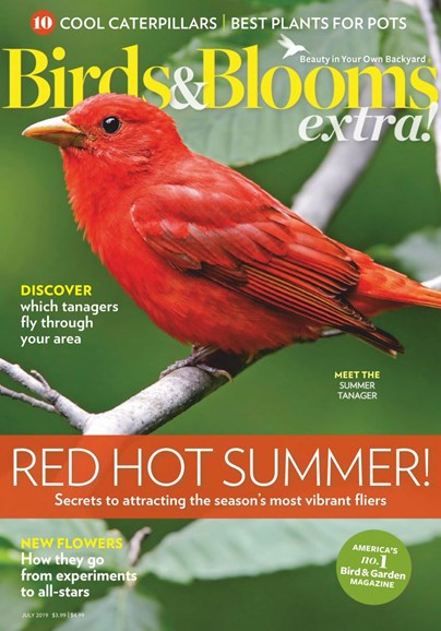Birds & Blooms Extra Cover - 7/1/2019