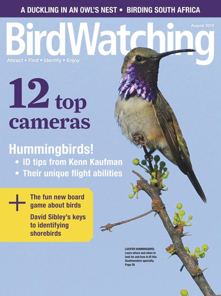 Bird Watching Cover - 7/1/2019