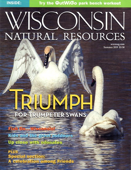 Wisconsin Natural Resources Cover - 6/1/2019