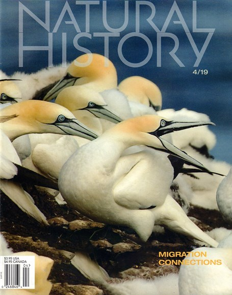 Natural History Cover - 4/1/2019